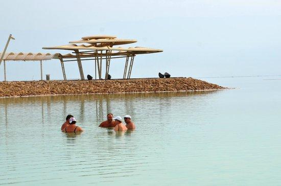 Leonardo Plaza Hotel Dead Sea : пляж
