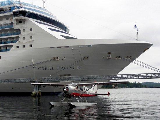 Island Wings Air Service: Docks near your ship!