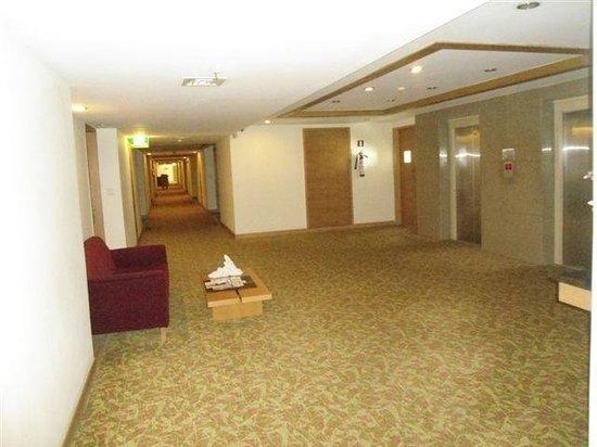 Park Plaza Chennai Omr: well cleaned corridor