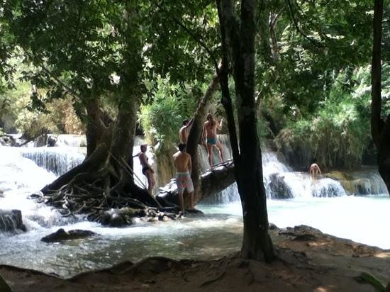 Kuang Si Falls: taking a dip