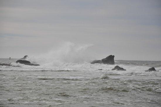 Mavericks: а вот и волны
