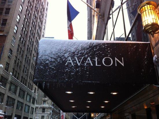 Avalon Hotel: Вход в отель