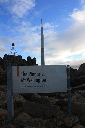 Mount Wellington: The Pinnacle