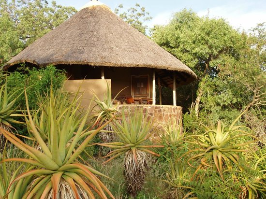 Olifants Rest Camp : Bungalow