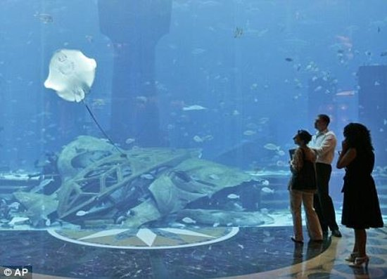 Atlantis, The Palm : aquarium