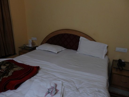 Hotel The Sutrupti: The room