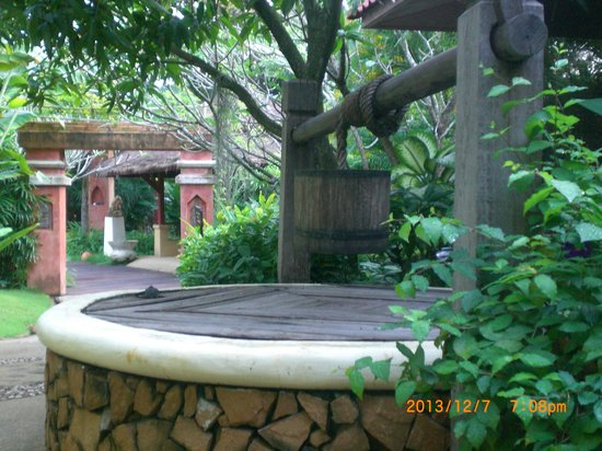 Zazen Boutique Resort & Spa : le jardin