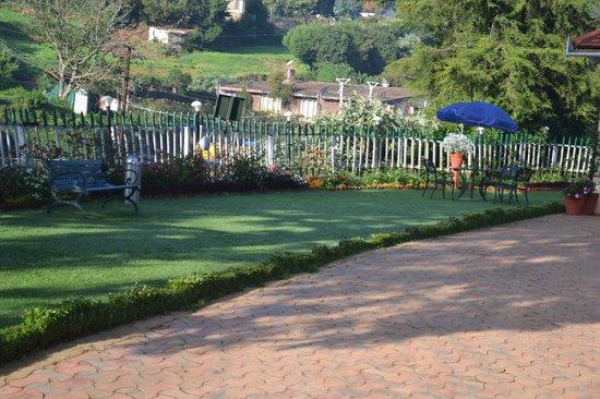 Bouganvilla: Patch of garden & seating