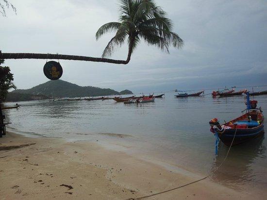 DJL Diving: Beach