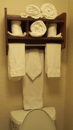 Hampton Inn Alexandria/Pentagon South: towels