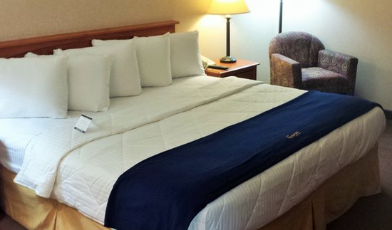 New Victorian Inn & Suites : Cozy New Bedding in Every Room