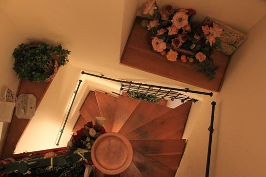 Bed and Breakfast New Day : The stairs to the apartment !!!