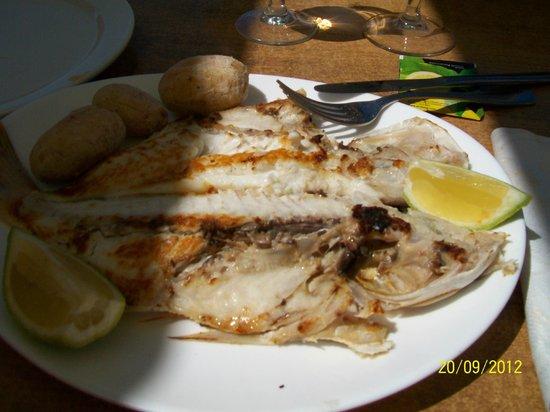 Restaurante La Gamba Loca : pescado del dia