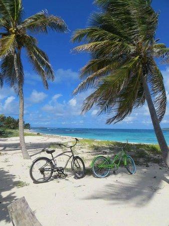 Palm Island Resort & Spa: 1 of the Beaches