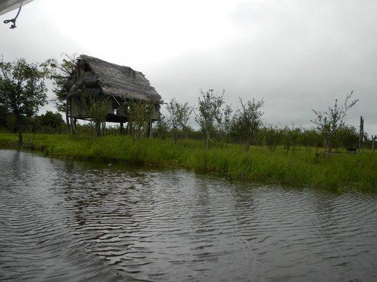 San Pedro Lodge E.I.R.L.: entrada al afluente desde el rio nanai
