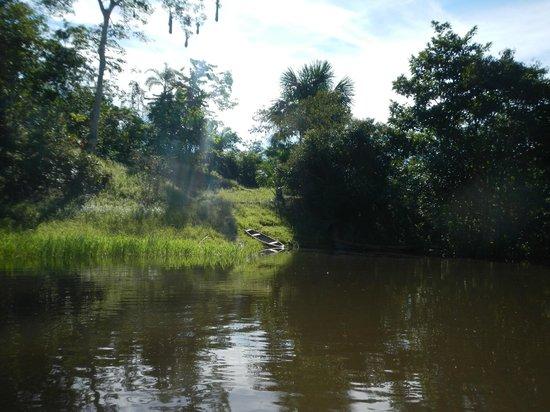 San Pedro Lodge E.I.R.L.: afluente navegable rio nanai