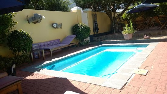 Tom's Guest House: Pool / Terasse