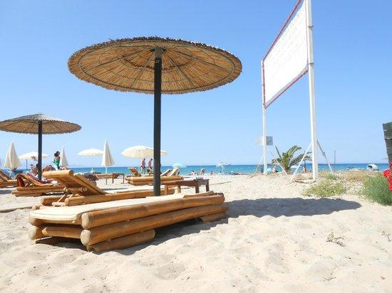 Petros Hotel: beach