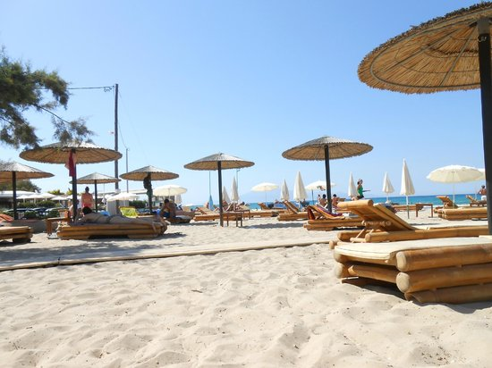 Petros Hotel: Tsilivi Beach - Moby Dick Bar