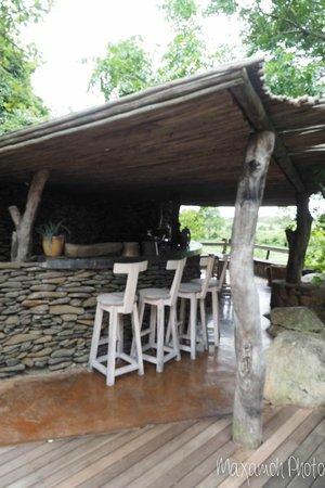 Singita Boulders Lodge: Pool Bar