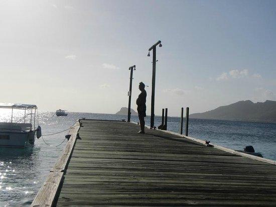 Palm Island Resort & Spa : Main Pier pointing towards Union Island