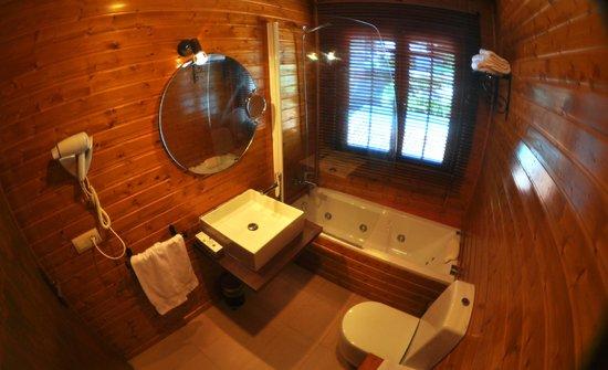 La Posada del Casar: Baño Habitación 5