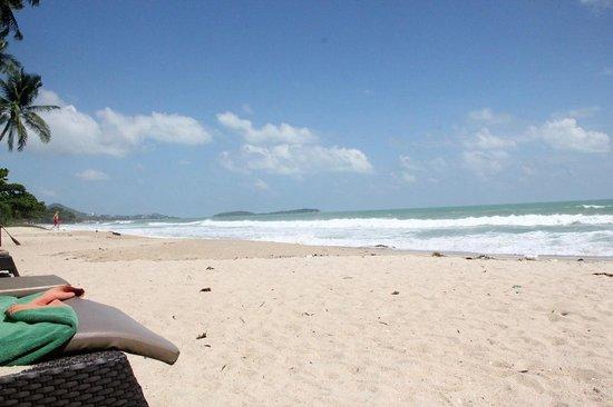 New Star Beach Resort: The beach
