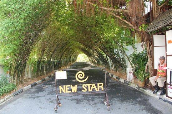 New Star Beach Resort : Entrance to the resort