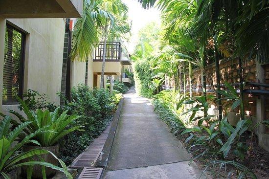 New Star Beach Resort: The territory of the resort