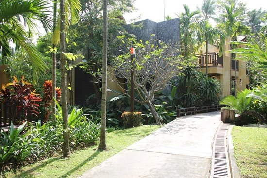 New Star Beach Resort : The territory of the resort
