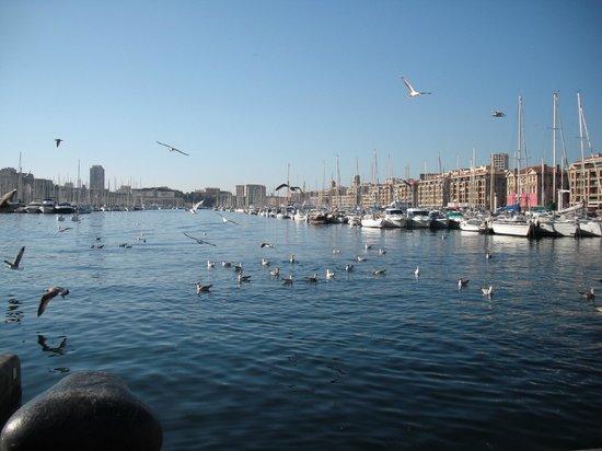 Novotel Marseille Vieux Port : vue du vieux port