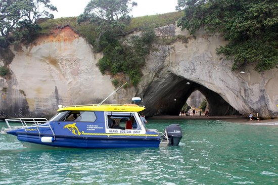 Glass Bottom Boat Whitianga: Cathedral Cove cruise