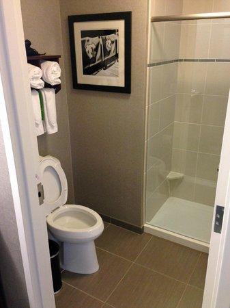 Hampton Inn & Suites Chapel Hill/Carrboro : Bathroom