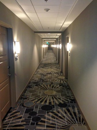 Hampton Inn & Suites Chapel Hill/Carrboro: Hallway