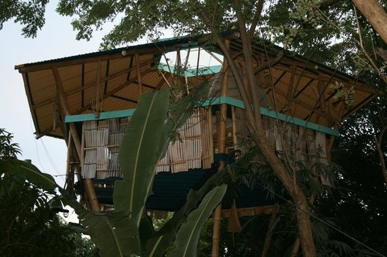 Tropical Treehouse : another view of the bedroom