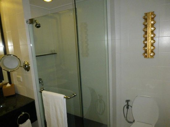 The Athenee Hotel, a Luxury Collection Hotel: shower