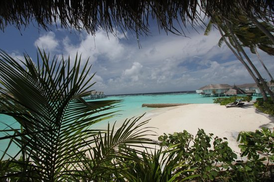 Centara Grand Island Resort & Spa Maldives : beautiful views