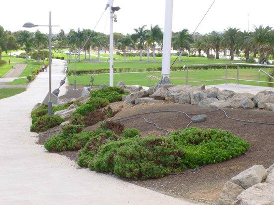 Club Vista Serena: Local Park