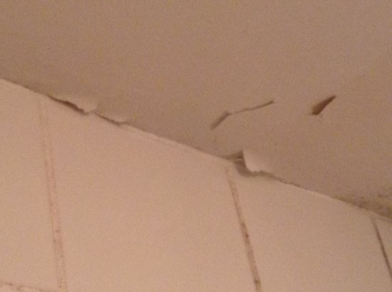 Adelphi Guesthouse: Peeling Ceiling