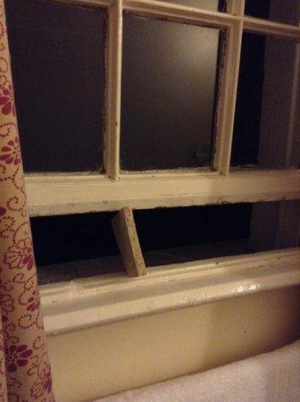 Adelphi Guesthouse: Window
