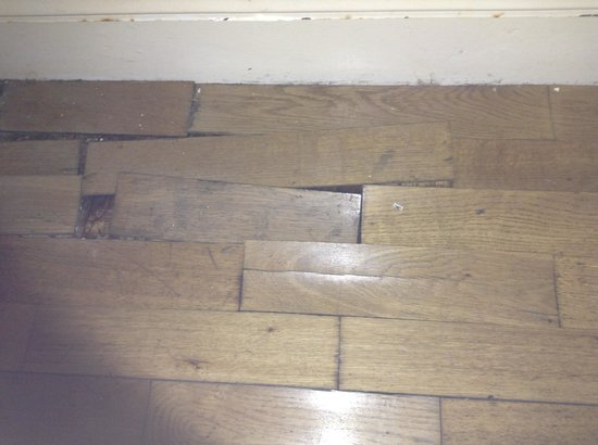 Adelphi Guesthouse: Flooring