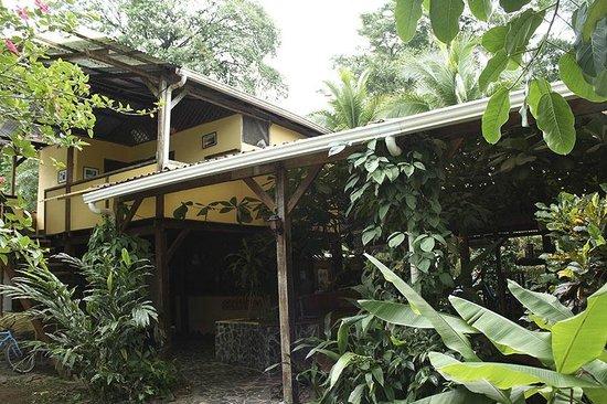 Cabinas Monte Sol: Vista externa de parte de las habitaciones
