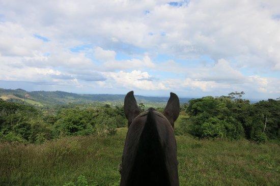 Cabalgata Don Tobias: Nice view