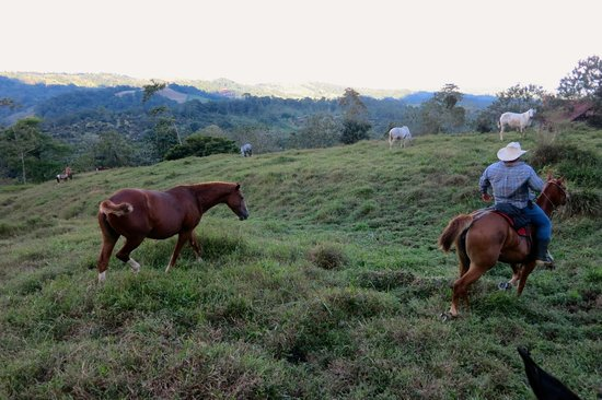 Cabalgata Don Tobias: On the trail