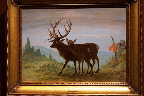 National Museum of Wildlife Art: George Catlin
