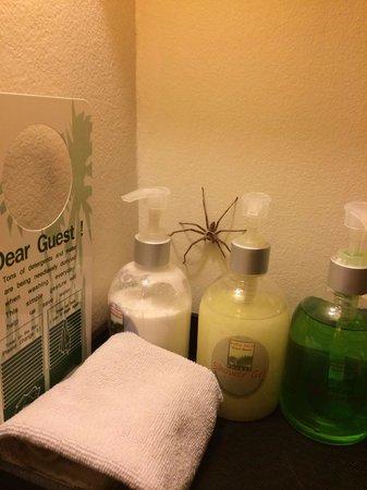 Rawai Palm Beach Resort : In bagno un simpatico amico...