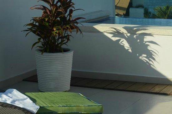 Marival Residences Luxury Resort Nuevo Vallarta : Asoleadero y piscina privada en el PH