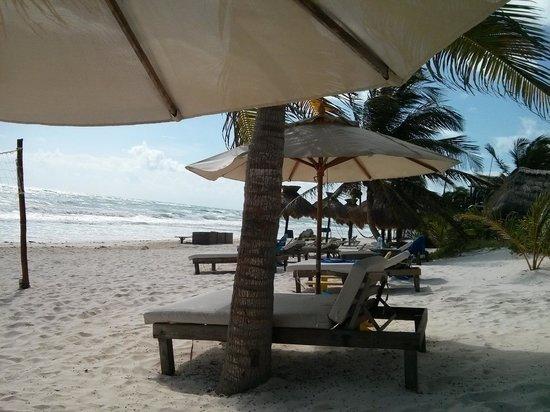 Cabanas La Luna : beach