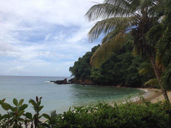 The Beach House Castara: Little Bay where the Beach House is