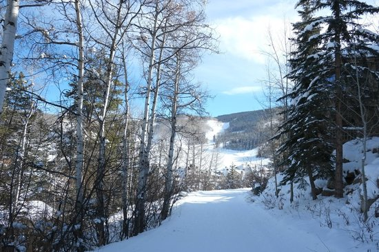 The Pines Lodge, A RockResort : Ski to the lift and home